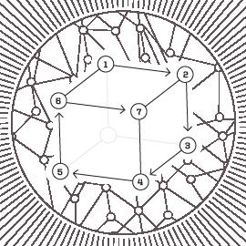 Mycelium-02