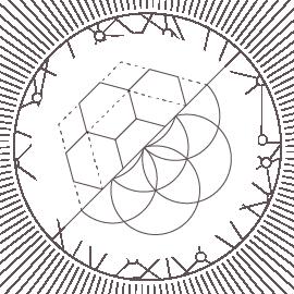 Mycelium-03